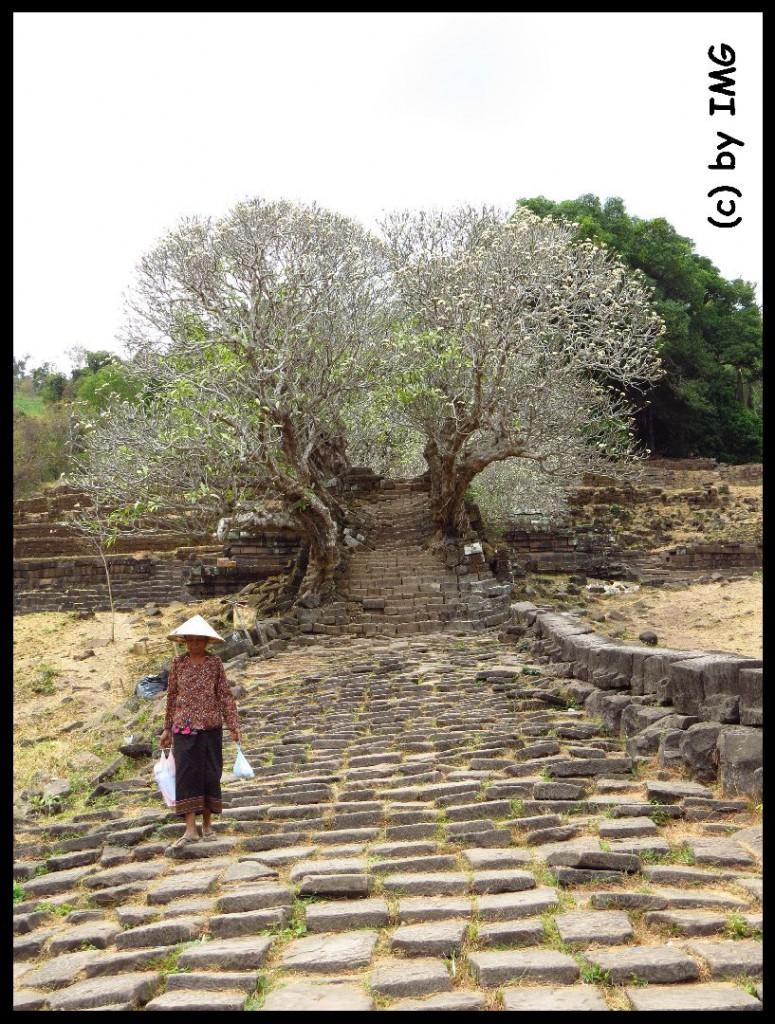 26.07.14 Vat Phou Treppe
