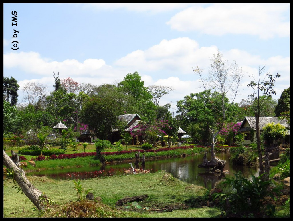 05.08.14 Garten Plantage