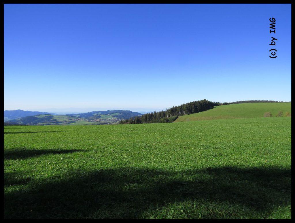 22.10.14 Schwarzwald 4