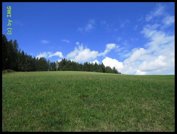09 Freiburg St. Peter Wanderung Kandelhöhenweg - Kopie