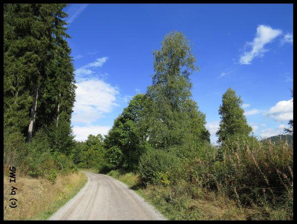 Schluchsee (8) - Kopie