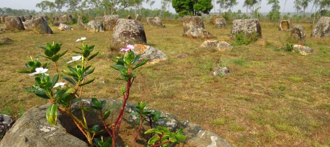 Laos 9 – Ebene der Tonkrüge