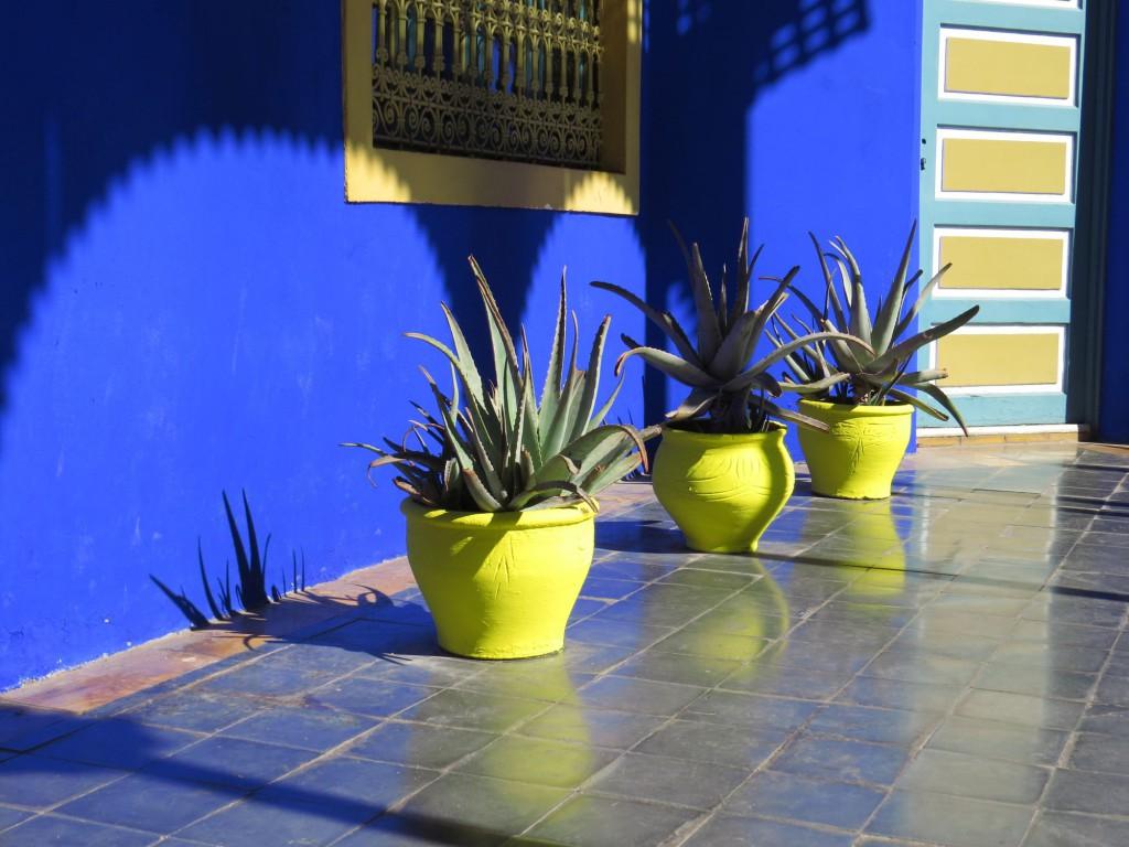 Marrakesch Jardin Majorelle Marokko