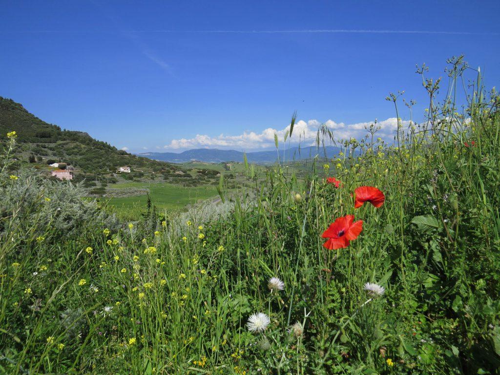 Sardinien Berge Aussicht