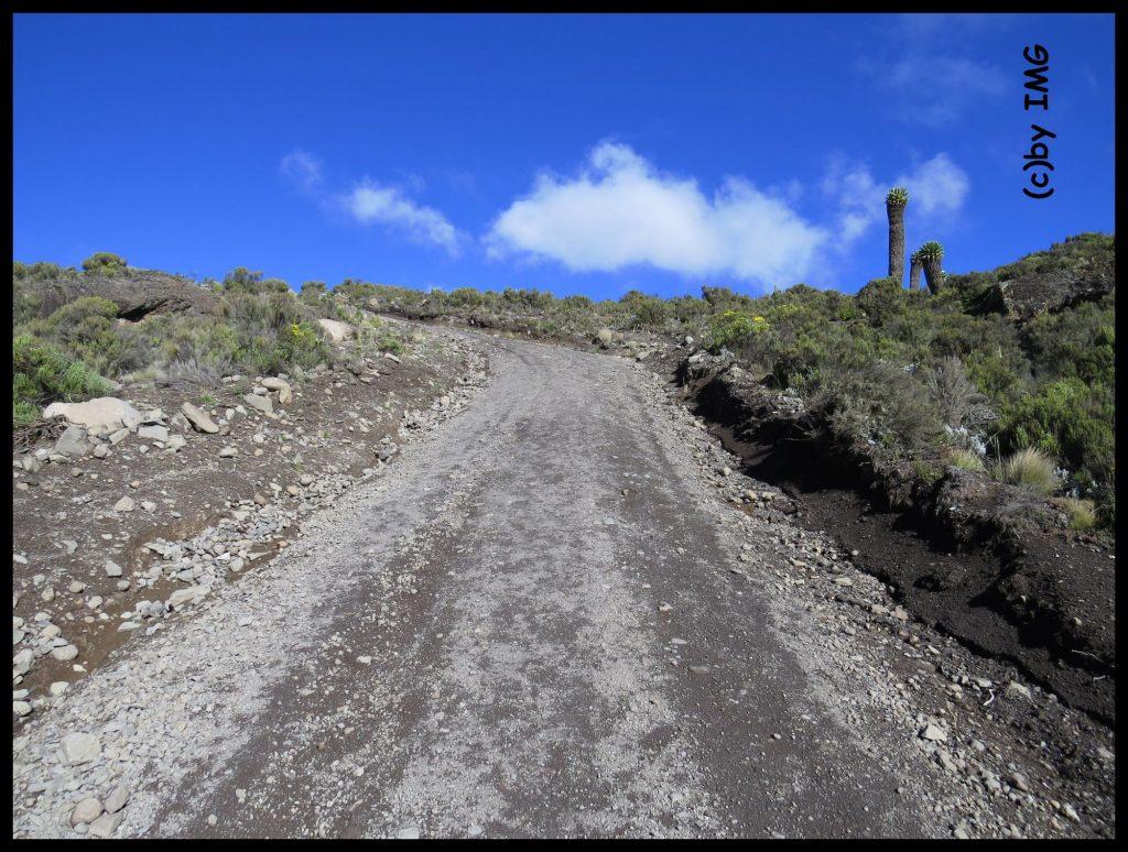 Kilimanjaro Kibo Kilimandscharo Tansania Trekking