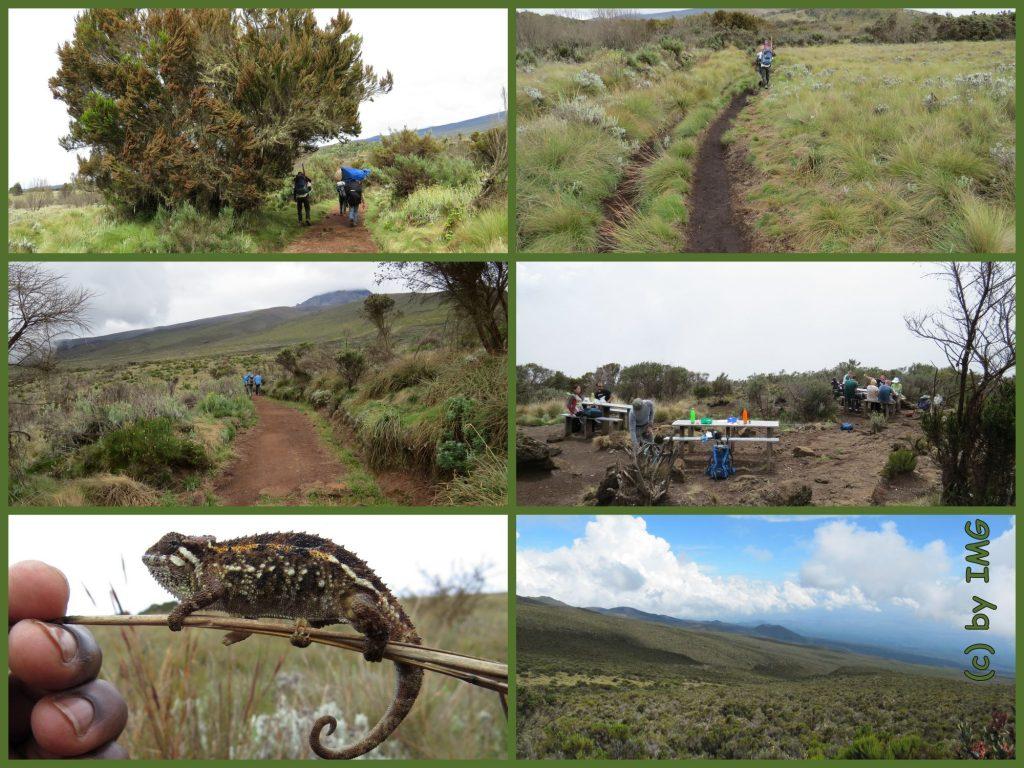 Madara Horombo Trekking Kilimadschao Kilimajaro